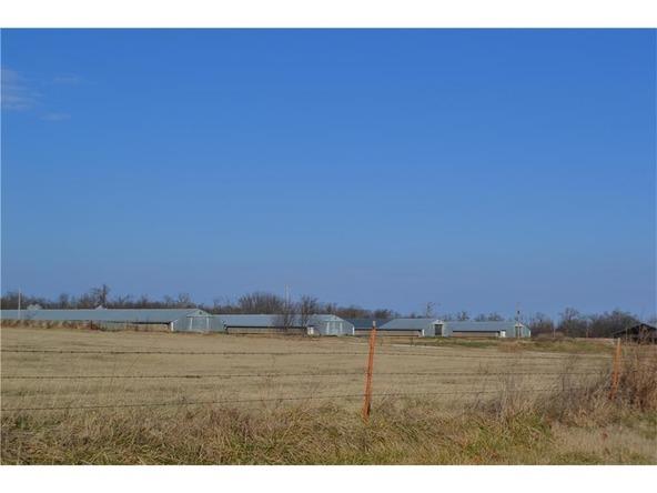 9210 Limeklin Rd., Decatur, AR 72722 Photo 4