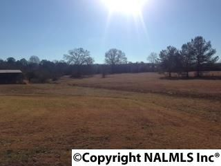 3787 Smith Rd., Southside, AL 35907 Photo 8