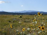 Home for sale: 19 Lago Vistas Blvd., Colorado City, CO 81019
