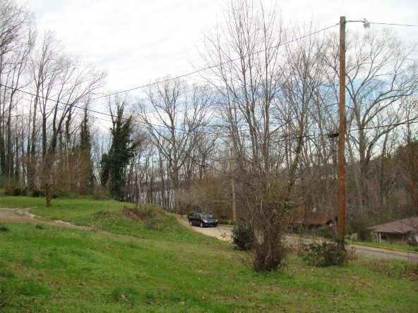 1625 Jordan St., Guntersville, AL 35976 Photo 17
