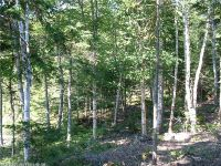Home for sale: Lot 21b Duck Cove Rd., Roque Bluffs, ME 04654