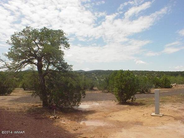 1b N. 8690, Concho, AZ 85924 Photo 3