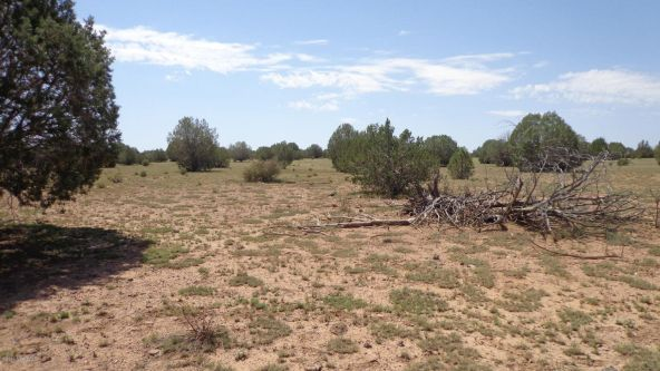 261 Juniperwood Ranch Lot 261, Ash Fork, AZ 86320 Photo 53