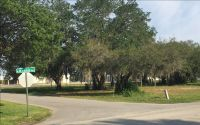 Home for sale: 596 Us 27 N., Avon Park, FL 33825