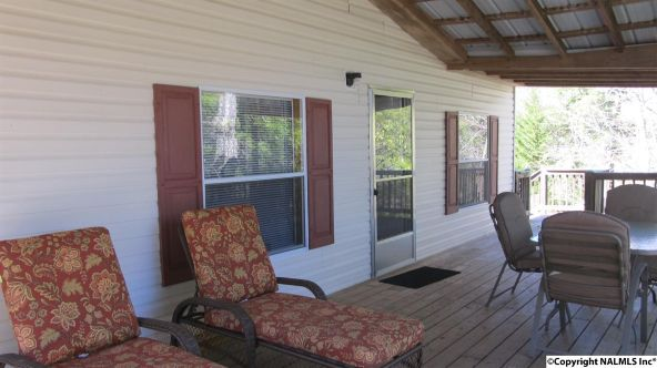 133 Cane Creek Overlook, Double Springs, AL 35553 Photo 2