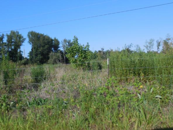 00 County Rd. 571, Hanceville, AL 35077 Photo 2