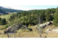 Home for sale: 881 Stonehenge Dr., Florissant, CO 80816