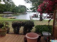 Home for sale: 900 Rivercrest Dr., Vincent, AL 35004