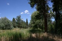Home for sale: Lot 7 Creekside Ct., Garden Valley, ID 83622
