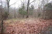 Home for sale: Lot #17 Lisa Ct., New Concord, KY 42076