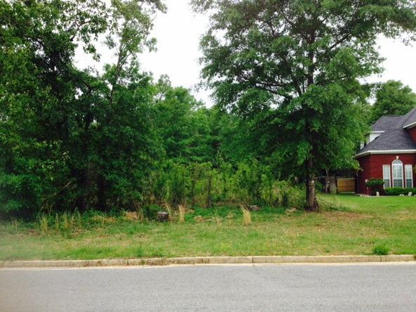 10039 Highfield Way, Mobile, AL 36695 Photo 5