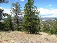 Home for sale: Lot 5 Spring Canyon Rd., Cripple Creek, CO 80813