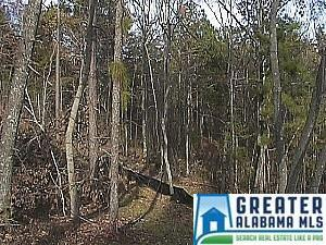 148 Autumn View Dr., Chelsea, AL 35147 Photo 7