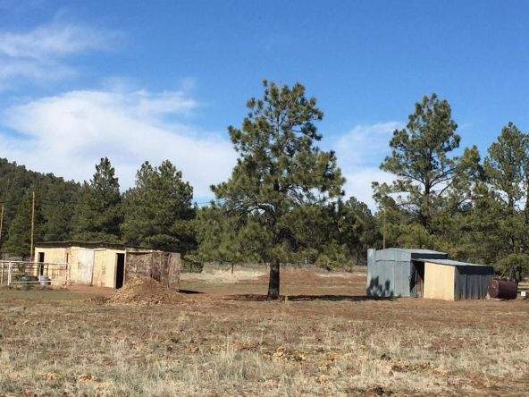 3602 E. Mountain Man Trail, Williams, AZ 86046 Photo 31