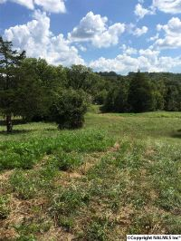 Home for sale: 000 Greenhill Blvd., Fort Payne, AL 35967