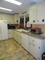 Home for sale: 1136 Crane Ln., Tarpon Springs, FL 34689