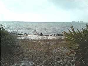 8997 Navarre Parkway, Navarre, FL 32566 Photo 7