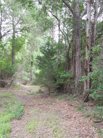 7.8acres Hardy Rd., Rehobeth, AL 36301 Photo 21