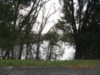 Home for sale: 000 Brackin Rd., Donalsonville, GA 39845