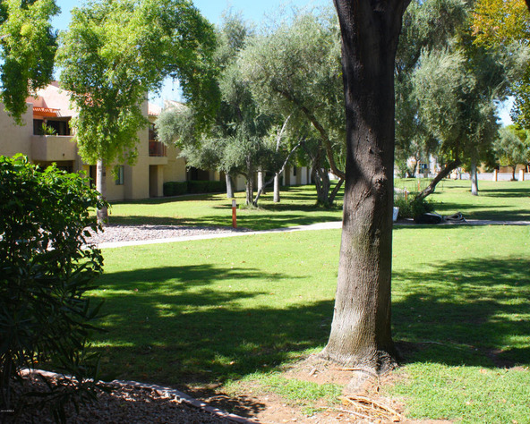 9460 N. 92nd St., Scottsdale, AZ 85258 Photo 10
