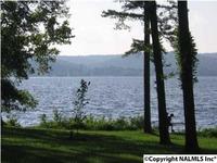 Home for sale: 2323 Sunset Dr., Guntersville, AL 35976