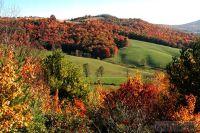 Home for sale: Lot #21 Twin Oaks Mountain, Sparta, NC 28675