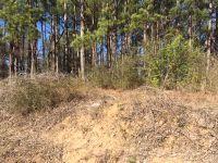 Home for sale: 454 Whooping Creek Rd., Carrollton, GA 30116