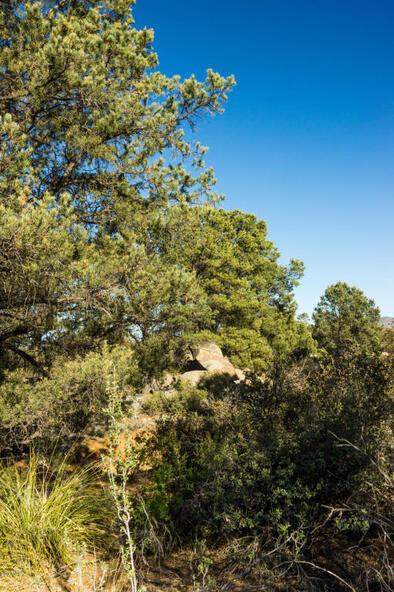 17955 W. Buckhorn Dr., Peeples Valley, AZ 86332 Photo 17