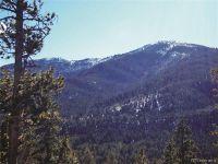 Home for sale: 30196 Mountaintop Dr., Buena Vista, CO 81211