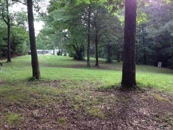 990 County Rd. 110, Rogersville, AL 35652 Photo 12