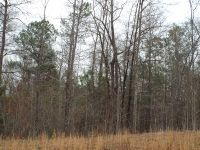 Home for sale: Lot 17 County Rd. 553, Valley, AL 36854