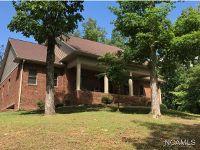 Home for sale: 390 Ege, Hanceville, AL 35077