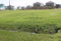 Home for sale: 132 Bud Dr., Crystal Beach, TX 77650