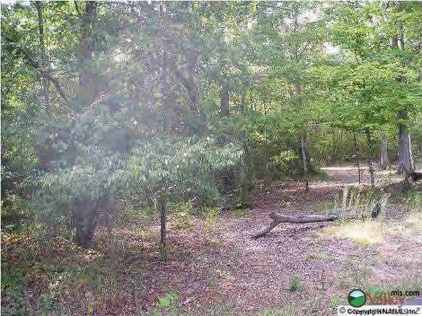 2 Alabama St., Scottsboro, AL 35768 Photo 1