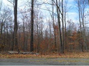 0 Palmiter Rd., Greene, NY 13778 Photo 4