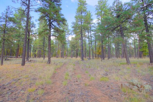 8100 W. Dk Ranch Rd., Flagstaff, AZ 86005 Photo 32