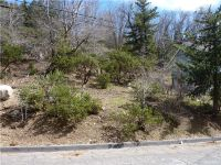 Home for sale: 0 Mountain Home Creek Rd., Angelus Oaks, CA 92305