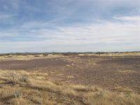 Home for sale: 0 Svr Unit 2 Bk 5, Deming, NM 88030