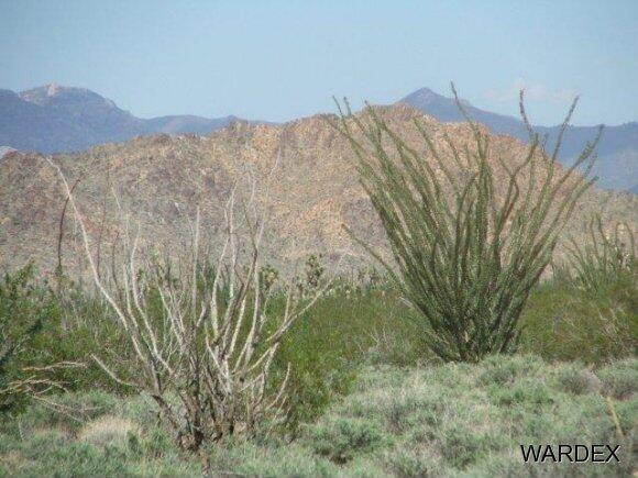 3181 Butch Cassidy Rd., Yucca, AZ 86438 Photo 21