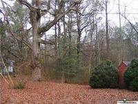Home for sale: Scenic Dr., Mentone, AL 35984