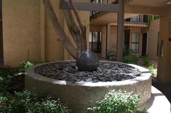 5124 N. 31st Pl., Phoenix, AZ 85016 Photo 47