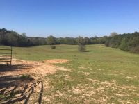 Home for sale: Scr 50a, Mize, MS 39116