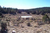 Home for sale: D-4c-1 Tierra Bonita, Tierra Amarilla, NM 87575