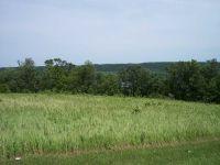 Home for sale: Lot 8 Estes Point Rd., Guttenberg, IA 52052
