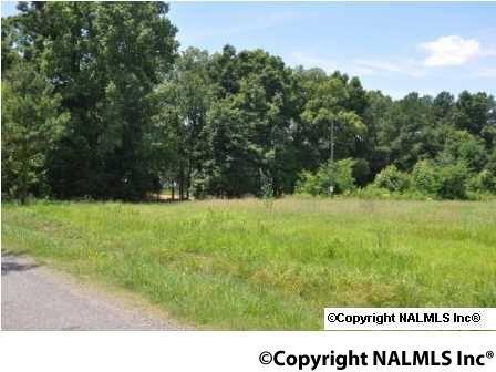 580 Howell Rd., Guntersville, AL 35976 Photo 35
