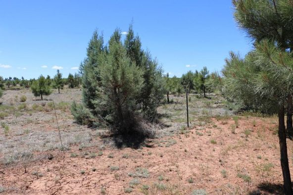 2664 Lodge Loop, Overgaard, AZ 85933 Photo 10