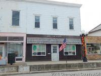 Home for sale: 111 W. Seminary, Onarga, IL 60955