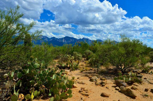 14601 N. Quiet Rain Dr., Oro Valley, AZ 85755 Photo 10