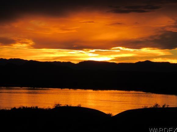1651 Sailing Hawks Dr. 139, Lake Havasu City, AZ 86404 Photo 3