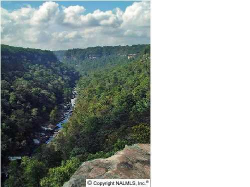 217 River Ridge Dr., Cedar Bluff, AL 35959 Photo 15